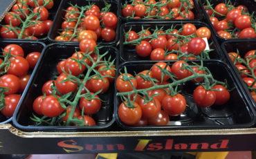 Piccolo cherry tomato